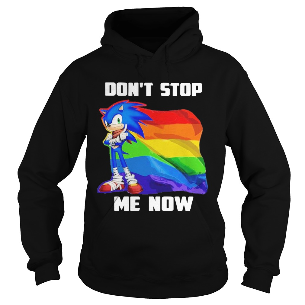 LGBT Sonic Dont Stop Me Now Flag  Hoodie