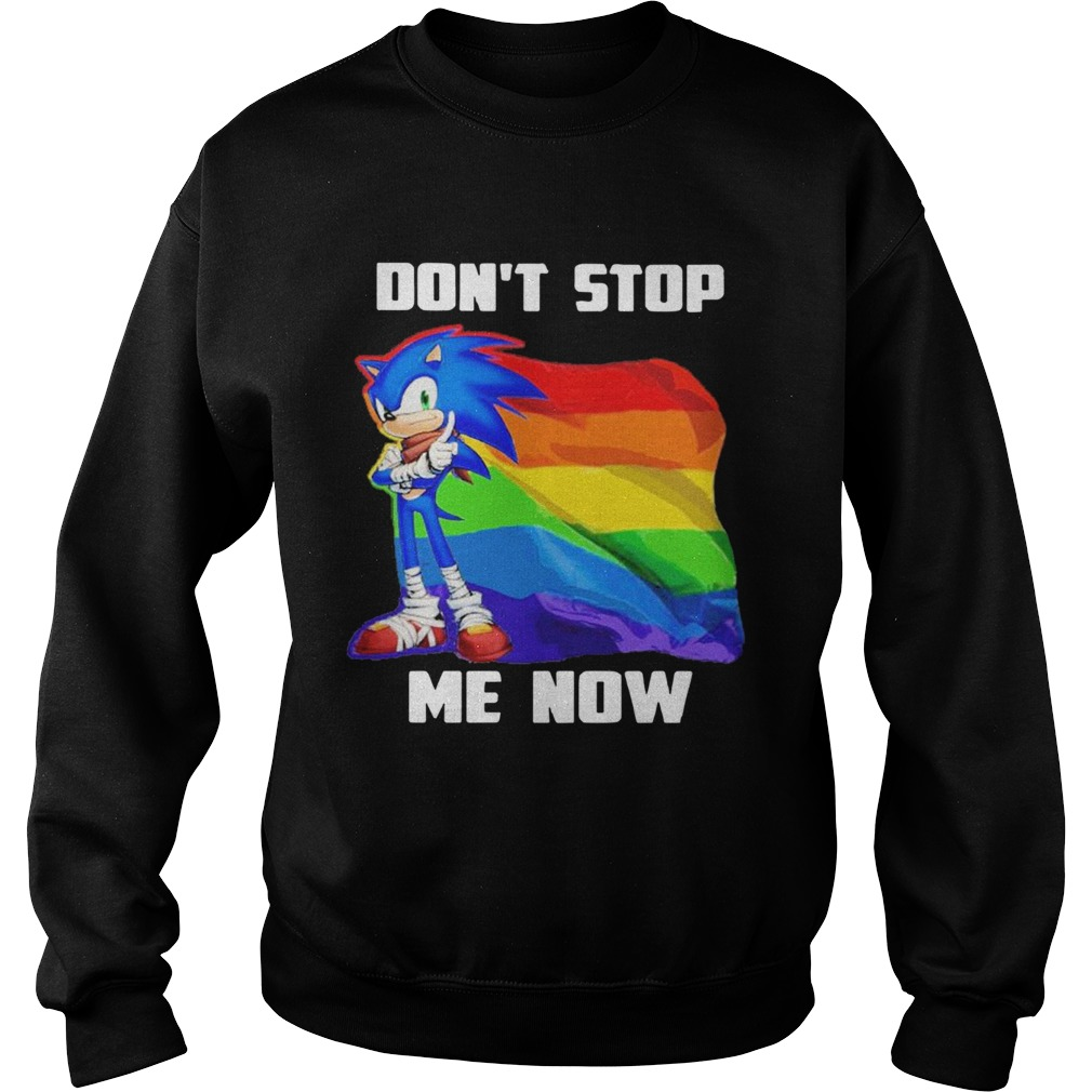 LGBT Sonic Dont Stop Me Now Flag  Sweatshirt